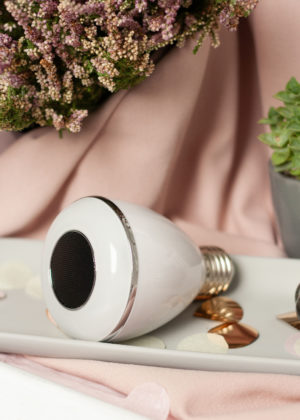 Lautsprecher Leuchtmittel