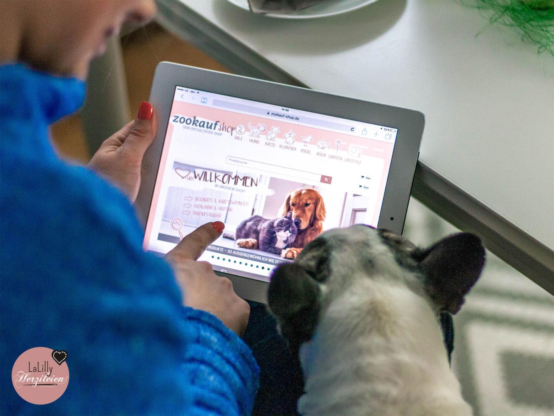 Anzeige: Hunde sind treue Begleiter, Katzen die guten Freunde mit eigenem Willen. Ein Osternest basteln, für den vierbeinigen Liebling? Jawoll, mit Freebie-Vorlage und gefüllt mit Produkten von Zookauf-shop.de