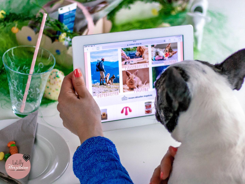 Anzeige: Hunde sind treue Begleiter, Katzen die guten Freunde mit eigenem Willen. Ein Osternest basteln, für den vierbeinigen Liebling? Jawoll, mit Freebie-Vorlage!
