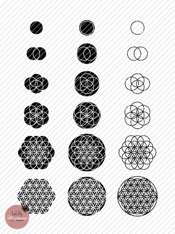 Plotterdatei Evolution der Blume des Lebens