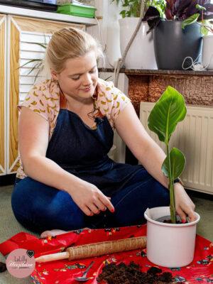 Pflanzunterlage nähen – Schnelles DIY für Pflanzen-Fans