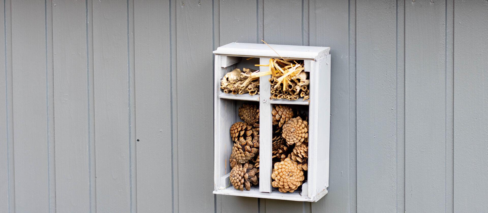 Anzeige: Insektenhotel bauen – DIY aus Holzresten